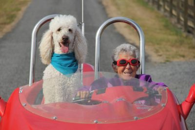 Photo of woman driving with her dog