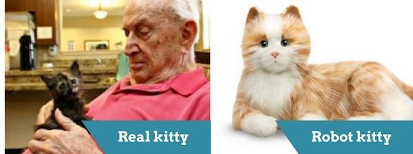 real-kitty